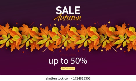 Autumn sale vector background. Autumn sale and discount text in red space with maple leaves in white textured background for fall season marketing promotion. Vector illustration.