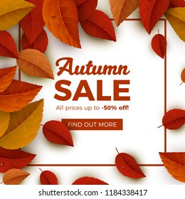 Autumn Sale Vector Banner Background