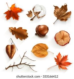 Autumn scrap set, vector elements