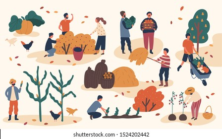 Autumn season harvest gathering flat vector illustration. Farmers working in field, stacking hay. Fruits and vegetables crop collecting. Scenes with gardeners and agricultural and farm workers.