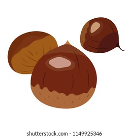 Autumn is in season. Illustration of Japanese chestnuts. Chestnuts can be found on the ground around trees.