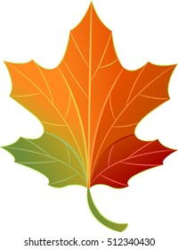 Autumn Themed Illustration Featuring a Maple Leaf Demonstrating the Process of Leaf Color Change