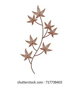 autumn tree branch leaves foliage botanical image
