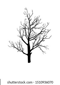 Autumn tree with dry branches without leaves, vector