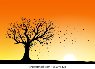 Autumn tree silhouette in sunset, wind blowing away the falling leaves