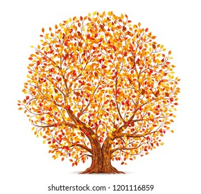 Autumn tree with yellow, orange and red leaves isolated on white background vector illustration