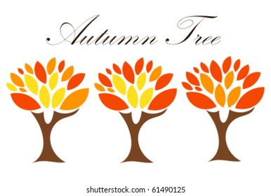 Autumn trees with colorful leaves. Three stages