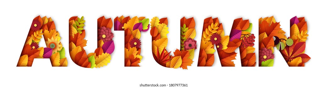 Autumn typography design made with leaves and floral elements. Vector paper cut style illustration. Can be used for business advertising, banners, posters. Fall maple leafs and foliage.