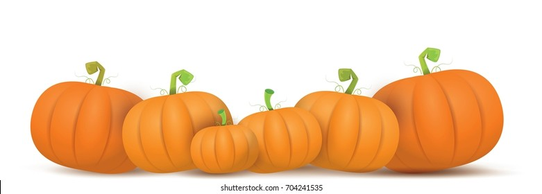 Image result for pumpkin border