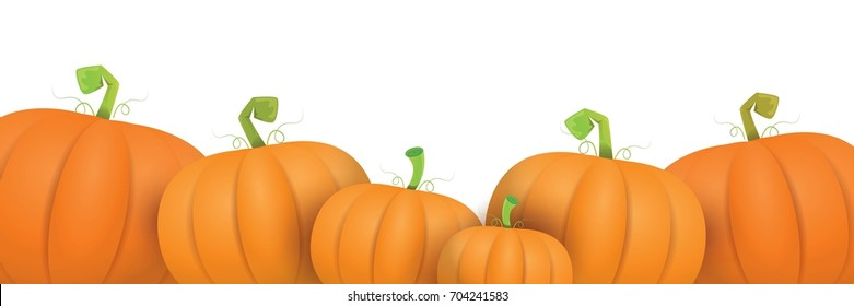autumn vector orange pumpkins horizontal banner design template for farm market banners and thanksgiving day backgrounds. vector Pile of orange pumpkins frame or border isolated on white background