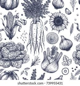 Autumn vegetables seamless pattern. Handsketched vintage vegetables. Line art illustration. Vector illustration