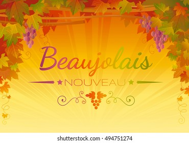 Autumn Vineyard poster. Text lettering in French Beaujolais nouveau means traditional new wine harvest festival in France. Fall festivities background. Winemaking banner. Vector illustration concept