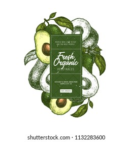 Avocado design template. Organic vegetables. Vector illustration