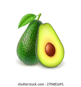 Avocado and slice isolated on white photo-realistic vector illustration