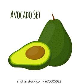 Avocado whole and slice. Tropical summer fruit. Made in cartoon flat style