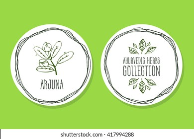 Ayurvedic Herb Collection. Handdrawn Illustration - Health and Nature Set. Natural Supplements. Ayurvedic Herb Label with Arjuna