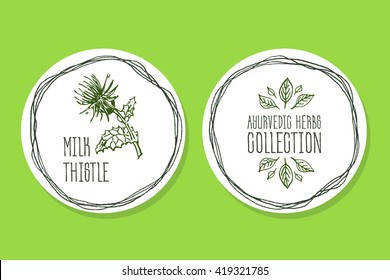 Ayurvedic Herb Collection. Handdrawn Illustration - Health and Nature Set. Natural Supplements. Ayurvedic Herb Label with Milk thistle