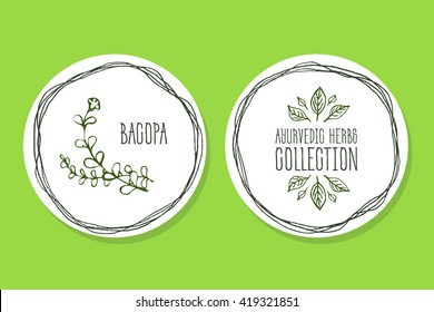 Ayurvedic Herb Collection. Handdrawn Illustration - Health and Nature Set. Natural Supplements. Ayurvedic Herb Label with  Bacopa