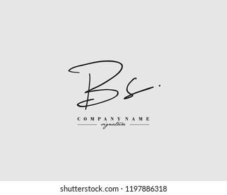 B S BS Signature initial logo template vector
