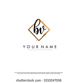 B V Initial abstract logo template vector
