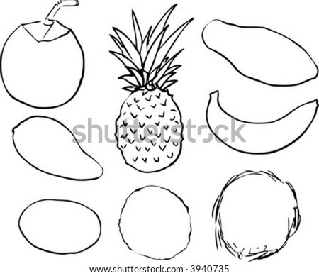 B W Lineart Illustration Tropical Fruits Stock Vector Royalty Free