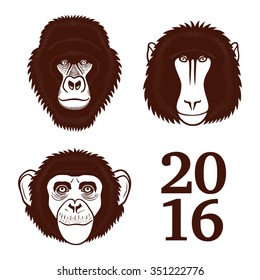 Baboon. Chimpanzee. Gorilla. Logo. Baboon, chimpanzee, gorilla isolated on white. Baboon, chimpanzee, gorilla isolated in vector.