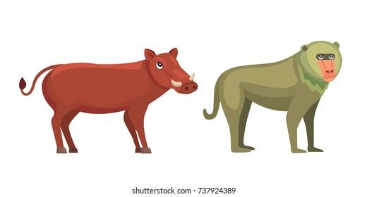 Baboon Monkey And Warthog Savanna Animals In Cartoon Style