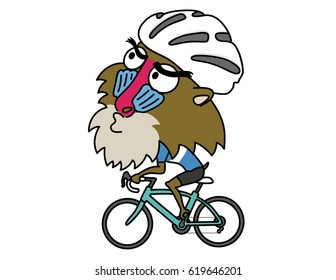 Baboon ride a Road Bike