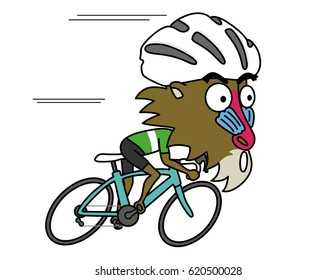 Baboon is sprinting by Road Bike