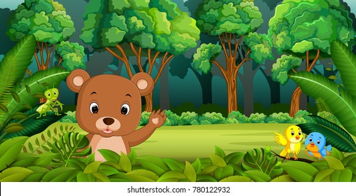 Baby Bear in the Forest