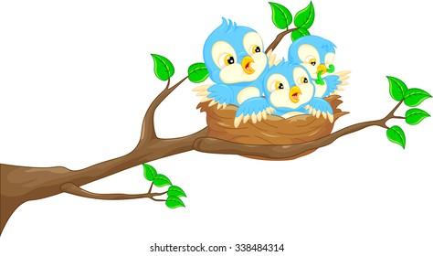 baby bird in the nest