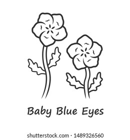 Baby blue eyes linear icon. Linen blooming flower with name inscription. Nemophila menziesii garden plant. Blue flax inflorescence. Thin line illustration. Contour symbol. Vector isolated drawing