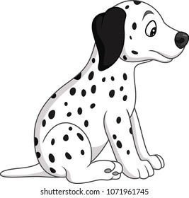 Baby dalmatian dog breed