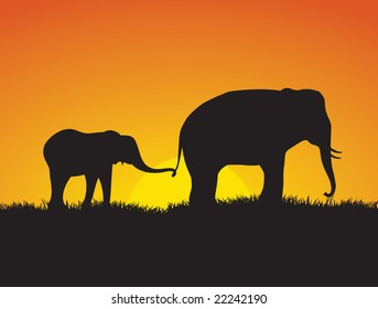 A baby elephant hold on to its mothers tail at they walk in front of a setting sun.