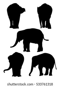 Baby Elephants - Vector