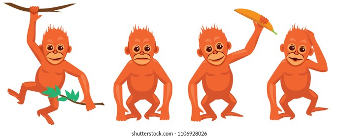 baby orangutans vector set. different poses and emotions isolated on white background