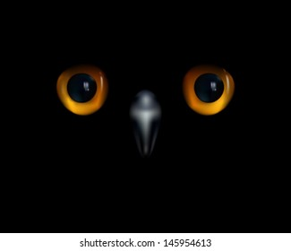 Baby owl. Yellow eyes and beak on black background.