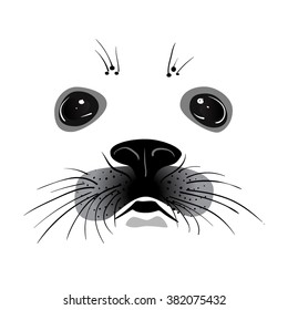 Baby seal face. Vector illustration