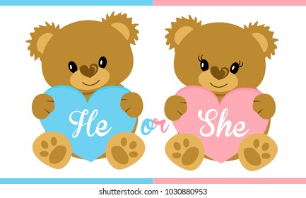 Baby Shower Invitation Gender Reveal Card. Boy( blue, he, mister) or girl ( she, pink, miss) Teddy holding heart. Invite template. Flat vector illustration. Cute cartoon for decoration party. Animals