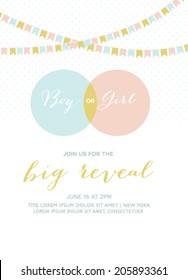 Baby Shower Invitation Gender Reveal Card