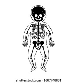 Baby skeleton anatomy in front view. Vector isolated flat illustration of human newborn child skull and bones in body. Halloween, medical, educational or science banner
