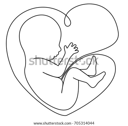 Baby Womb One Line Drawing Stock Vector Royalty Free 705314044