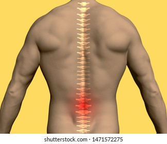Back of a man with a translucent spine and a red area in the lumbar region. 3D. Vector illustration.