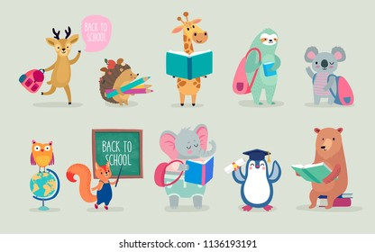 Back to school Animals hand drawn style, education theme. Cute characters. Bear, sloth, penguin, elephant, and others. Vector illustration.