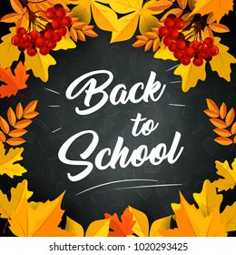 Back to School poster of autumn September leaves foliage of maple, rowan or oak and chestnut yellow leaf on school chalkboard or blackboard background. Vector design for education and study season