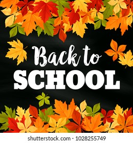 Back to School poster of September autumn leaves foliage. Vector falling maple, oak, rowan or chestnut leaf on school chalkboard or blackboard background for seasonal education and study design