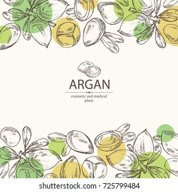 Background with argan: leaves and argan nuts. Cosmetic and medical plant. Vector hand drawn illustration.