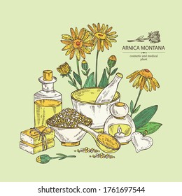 Background with arnica montana, arnica flower and leaves, soap and bath salt . Cosmetic and medical plant. Vector hand drawn illustration.