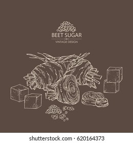 Background with beet sugar: sugar and beet. Hand drawn