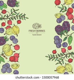 Background with berries: bilberry, cranberry, blackberry and gooseberry. Vector hand drawn illustration.